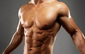 XG-55 Precio, Masa Muscular, Proteinas