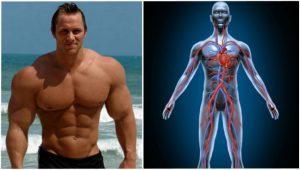 XG-55 funciona, efectos secundario, musculation masa - fast