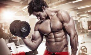 Trevulan Muscle en farmacias - donde comprar?